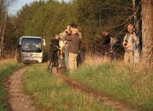 Birding in Estonia
