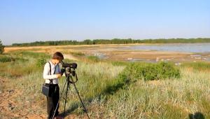 self-guided-tour-nature-Estonia